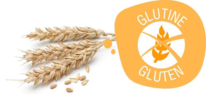 Allergeni Senza Glutine