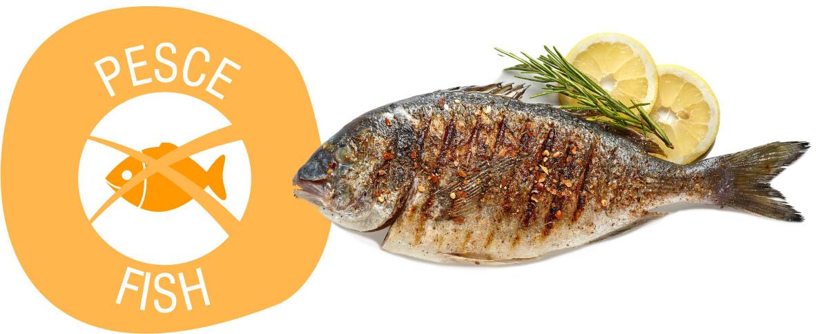 Allergeni Senza Pesce E Derivati